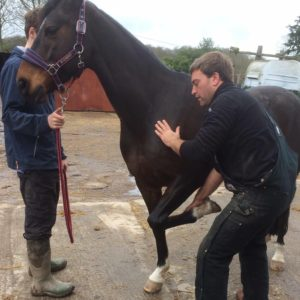 Tom Beech Osteopathic Vet Evening Talk on 14 Jan 2019