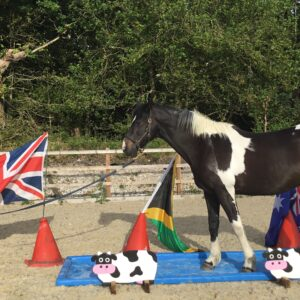 The Confident Horse Clinic – 14 September