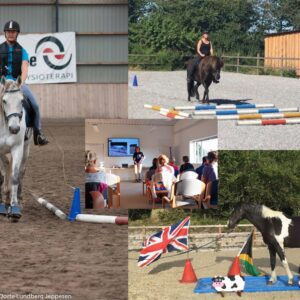 Gentle Gymnastics (for your horse) on 26 July