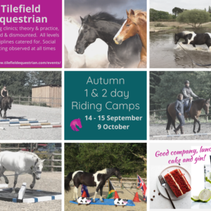 Tilefield Two Day Clinic 14 & 15 Sept – One day attendance £100